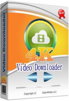 4K Video Downloader 4.13.3.3870 (2020) PC | RePack & Portable by TryRooM